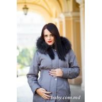Scurta pentru gravide